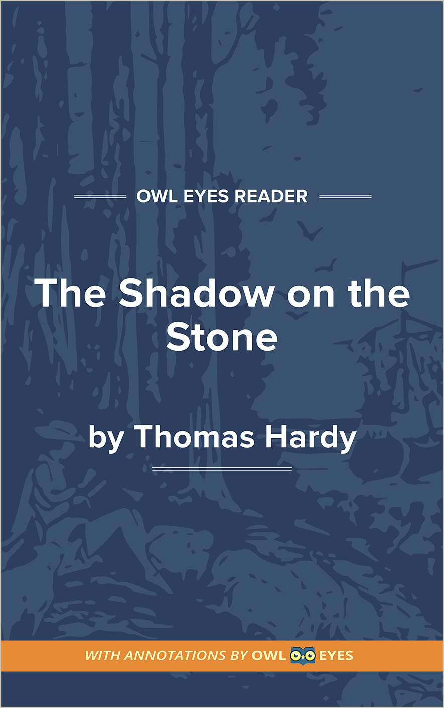 The Shadow on the Stone Cover Image