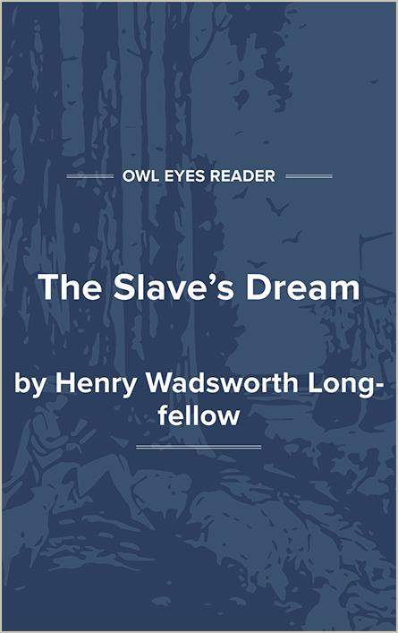 The Slave's Dream Cover Image