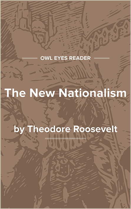 The New Nationalism Cover Image