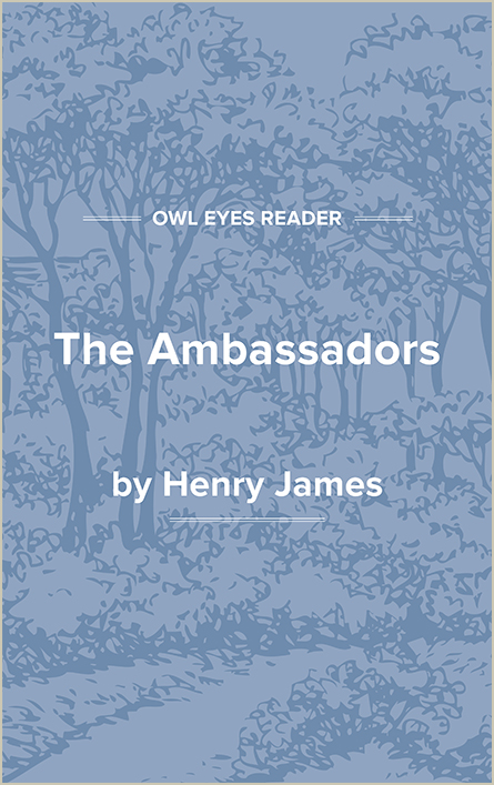 The Ambassadors Cover Image