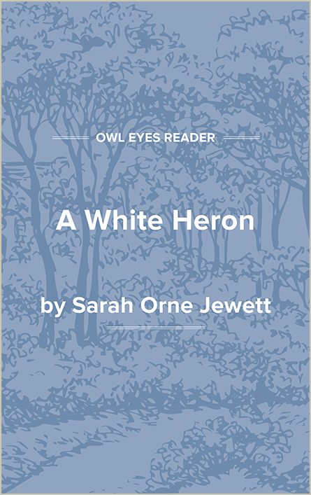A White Heron Cover Image