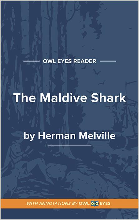 The Maldive Shark Cover Image