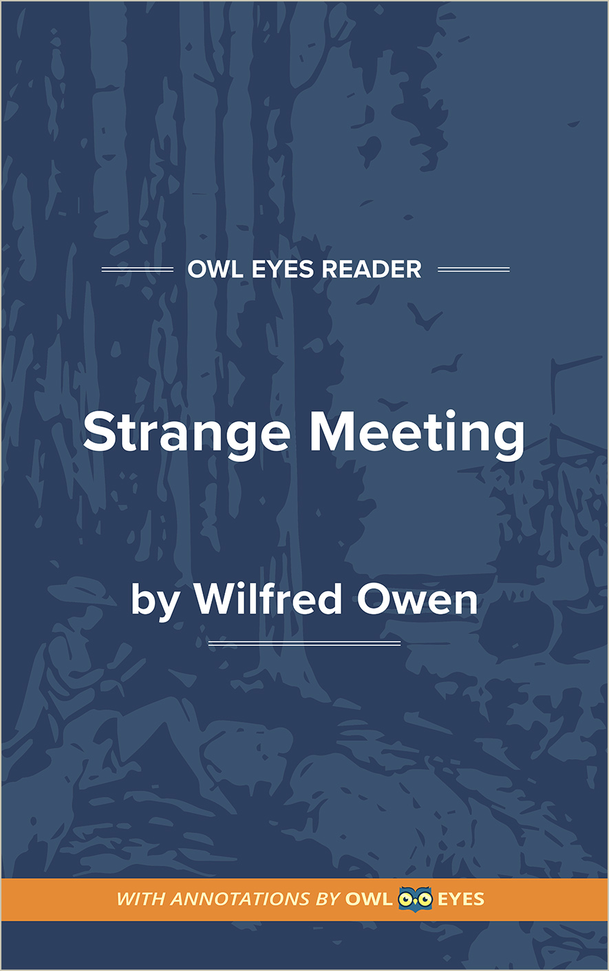 Strange Meeting Cover Image