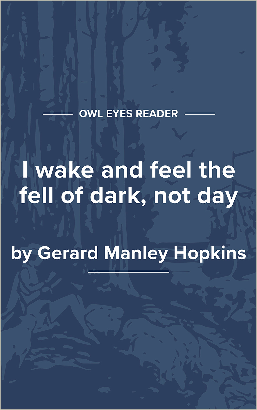 I Wake and Feel the Fell of Dark, not Day Cover Image