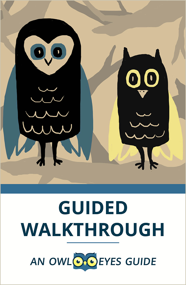 Guided Walkthrough Cover Image
