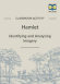 Hamlet Imagery Activity page 1