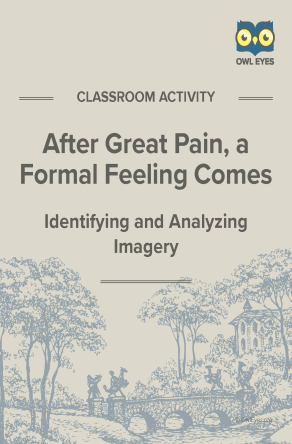 After Great Pain, a Formal Feeling Comes Imagery Activity